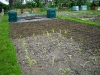 allotment tilled ready for planting out