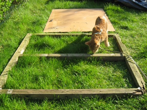 Compost Frame with Angus No.1