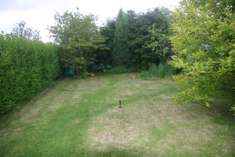 Front Lawn No.5 (cut!)