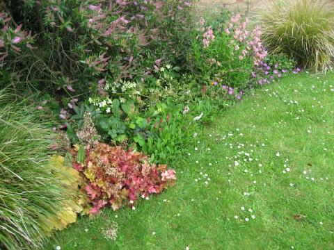 front-garden-border2-2009