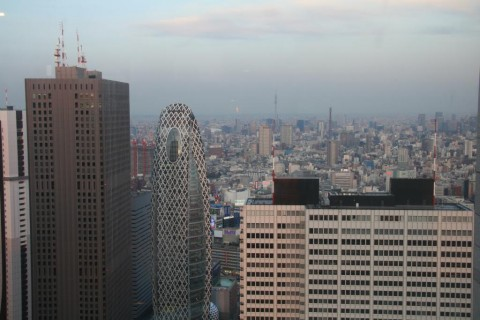 View from the Tokyo Metropolitan Government Office Building
