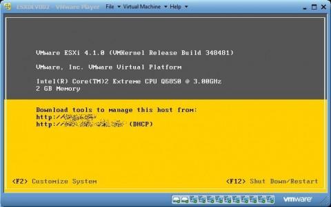 VMware vSphere Hypervisor (ESXi) installed and operating in VMware Player 3.1.4