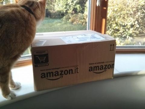 amazon-order1
