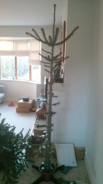ochristmastree