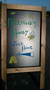 Meltonby Honey Sold Here