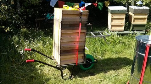 6 'honey-supers' on my bee barrow!