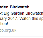 Have you done the RSPB Great Garden Birdwatch yet? there is still time ? @Natures_Voice #BigGardenBirdwatch