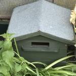 Andy's Bumblebee Hive - Beepol Villa
