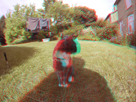 Esther in 3D