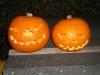 pumpkins2010-05